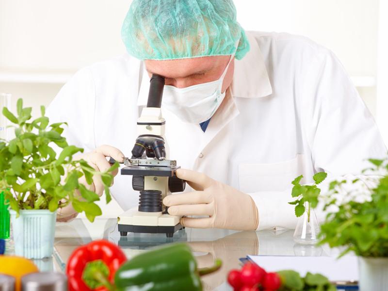 Ученые рассказали о продуктах против коронавируса