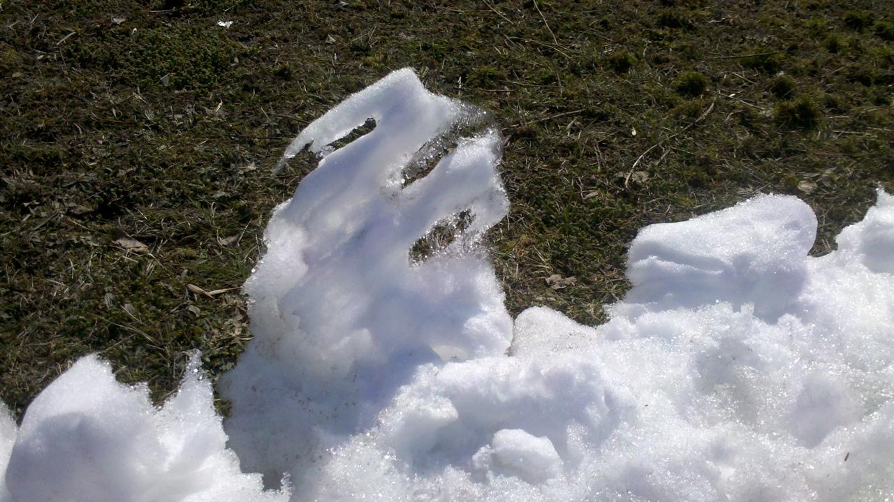 Белая полоса снега, становилась все уже и уже ...