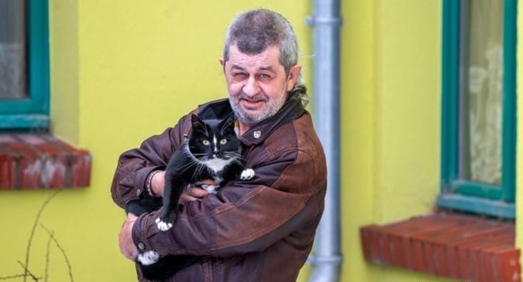 В немецком Деммине кота не допустили участвовать в выборах мэра