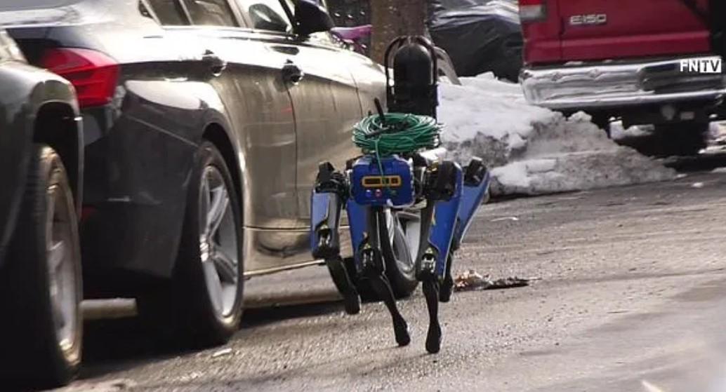 В США полицейские тестируют робота-собаку