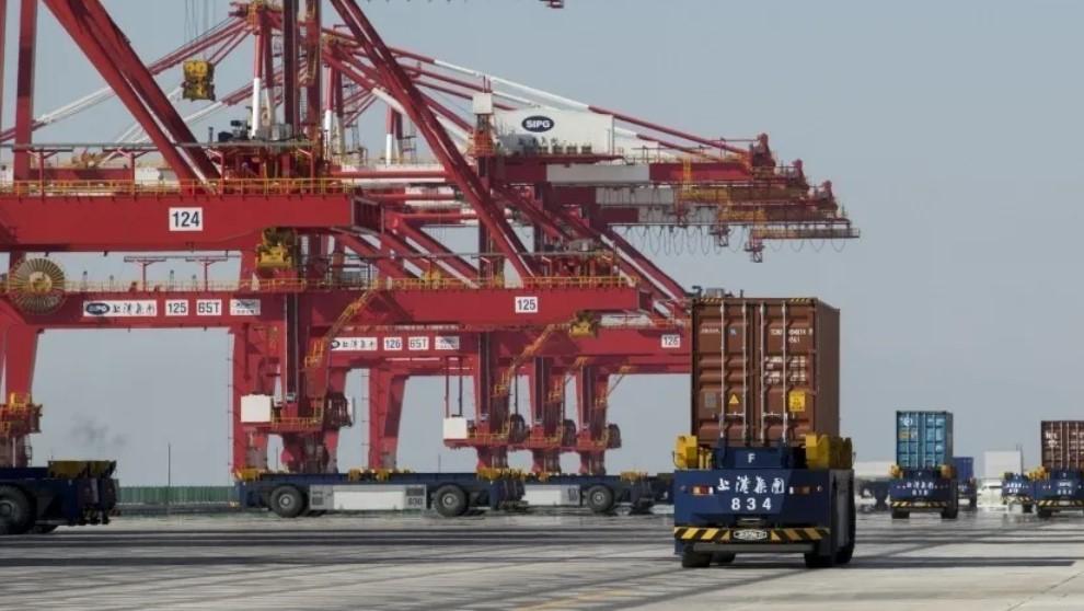 В Китае арестовали корабль с замороженными мужскими пенисами