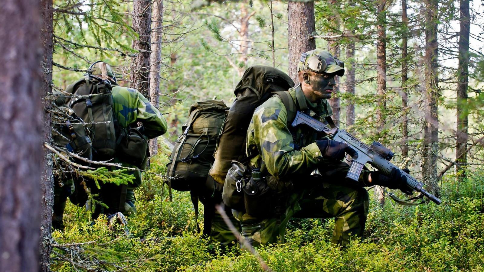 Бельгийская армия присоединилась к охоте на ультраправого солдата в лесу