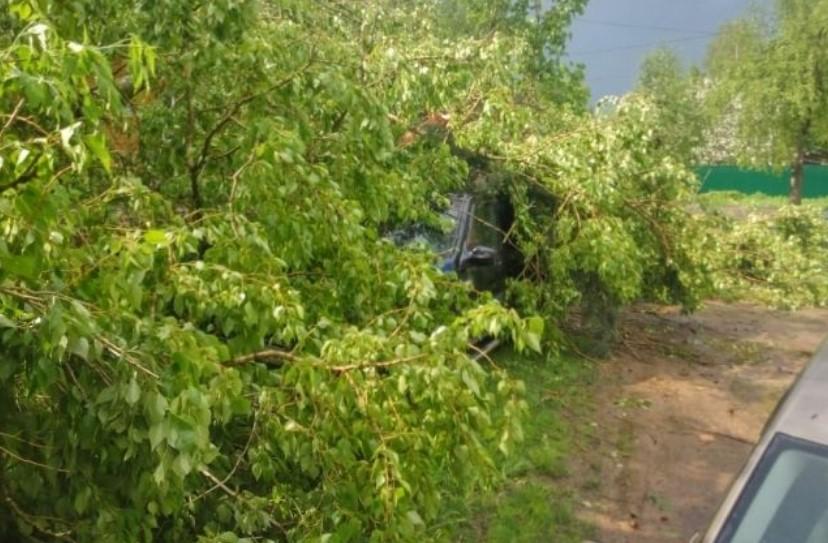 Мощный ураган с градом повредил машины и дома в Тверской области