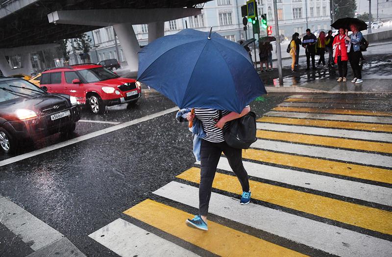Российский ученый предупредил об опасности кислотных дождей