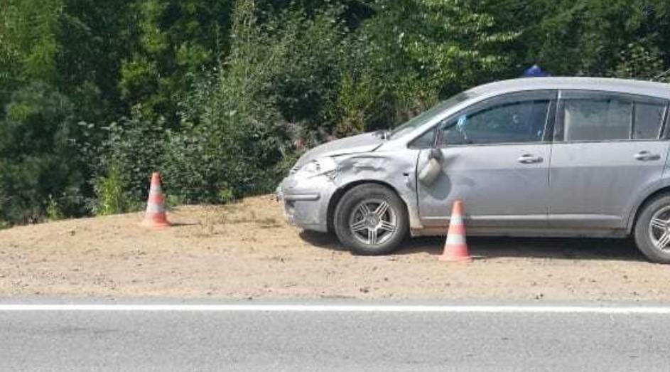 Спасая собаку, водитель сбил насмерть ее хозяина