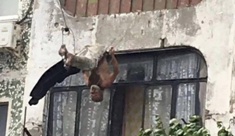 Бельевые верёвки спасли жизнь россиянину, выпавшему с 5 этажа