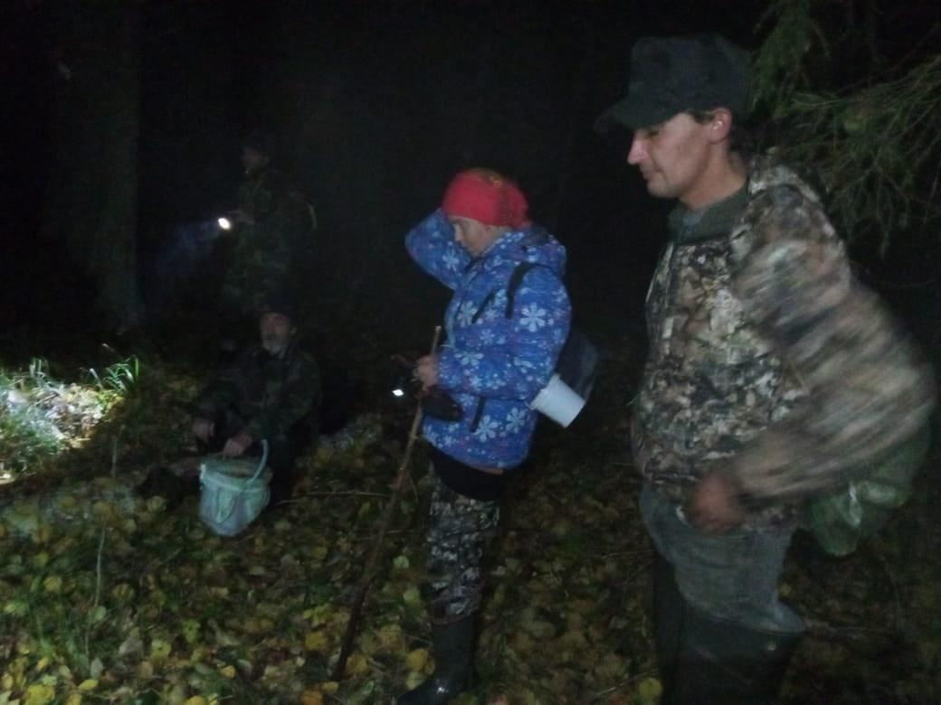 В Тверской области благодаря бобрам спасли трех человек