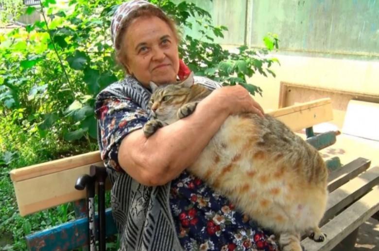 Бабушка вынуждена была сесть на диету вместе с котом